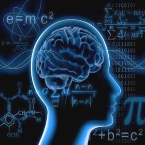 Taux de change et cerveau humain ?